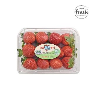 [슈퍼마트]딸기 500g (특)