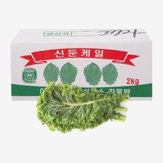 [대용량]청겨자 2kg X 1박스